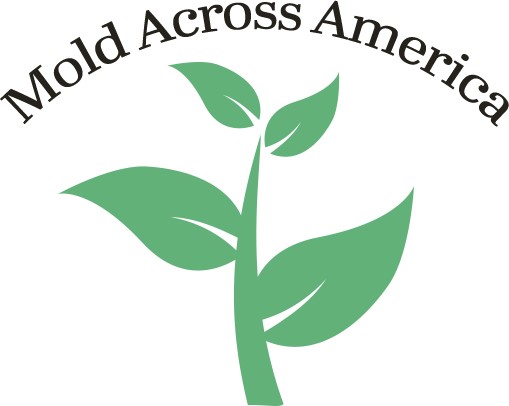 Mold Across America